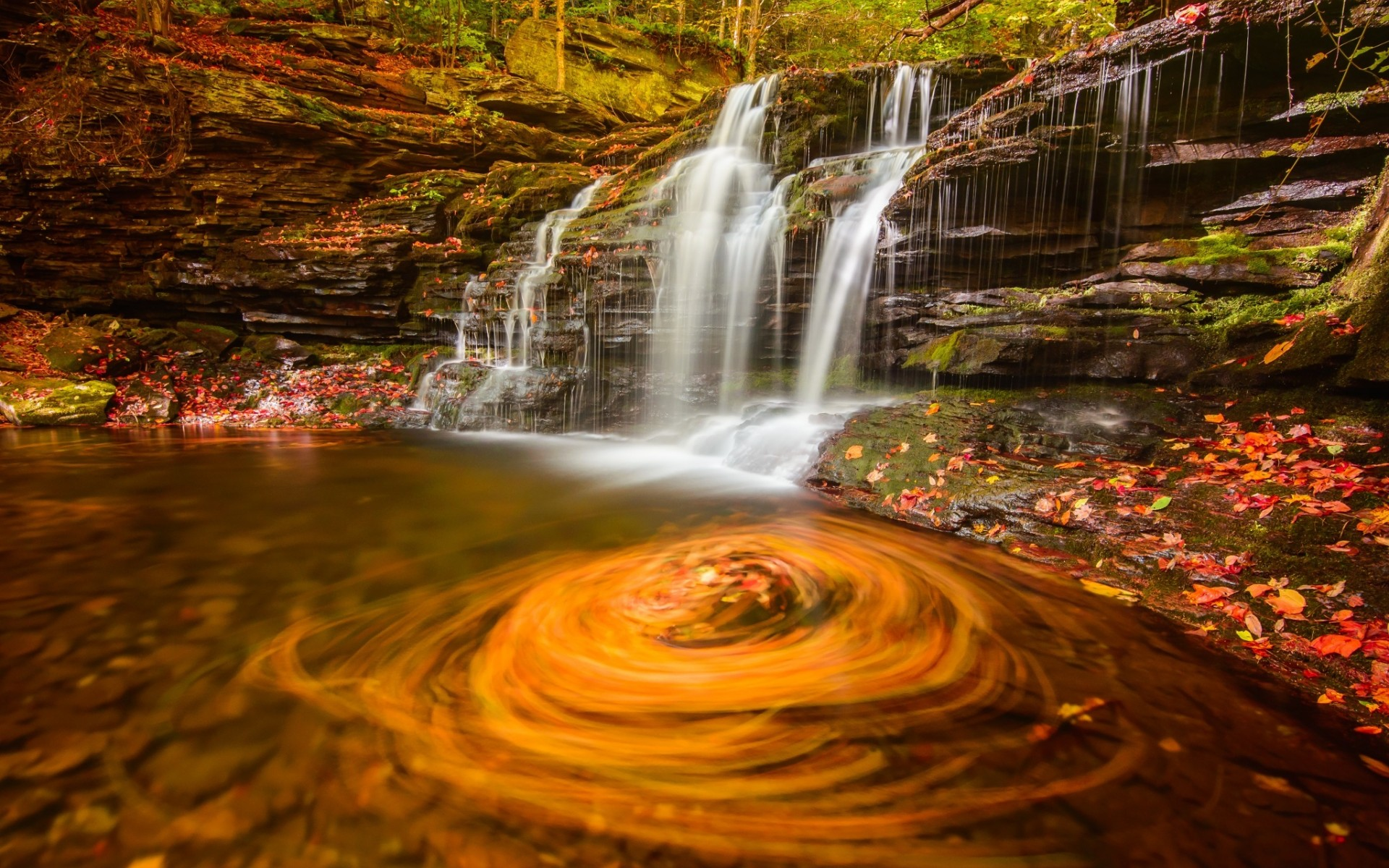 autumn, fallen leaves, waterfall